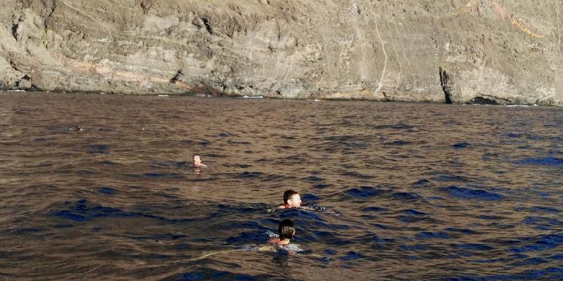 Avistamiento de cetáceos | Excursiones en barco | Tenerife Sur | Acantilados de Los Gigantes