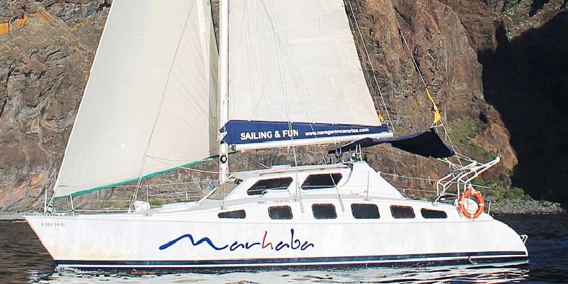 Avistamiento de cetáceos | Excursiones en barco | Tenerife Sur | Los Gigantes | Marhaba Catamarán