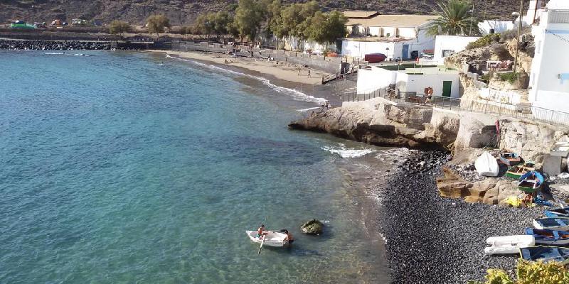 Avistamiento de cetáceos | Excursiones en barco | Tenerife Sur | Puertito de Armeñime