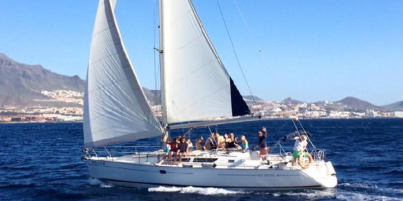 Avistamiento de cetáceos | Excursiones en barco | Tenerife Sur | Puerto Colón | Roulette Charters
