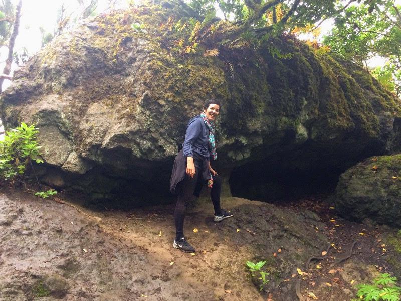 Recorriendo el sendero   El Bosque Encantado de Anaga   Tenerife