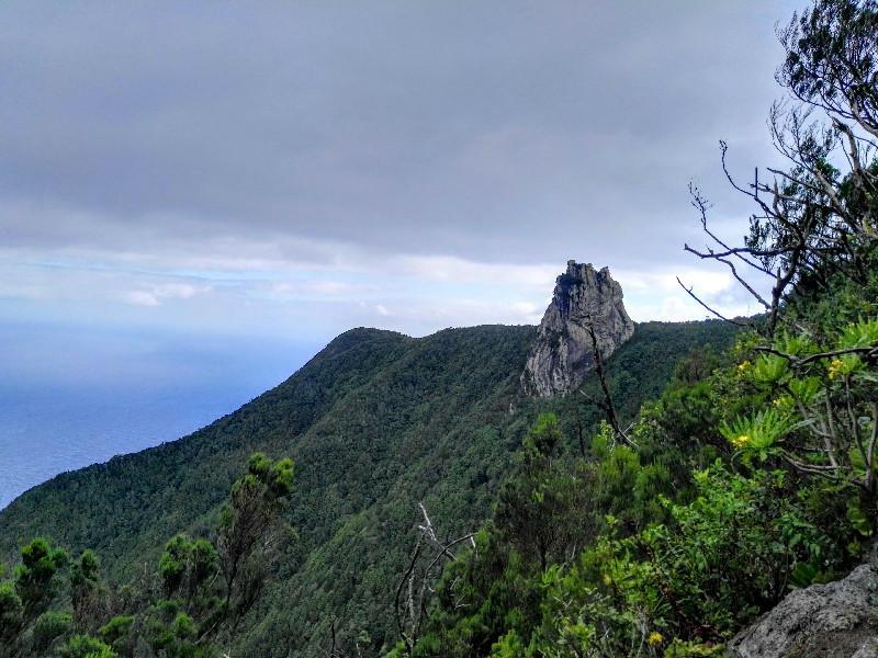 Vistas desde el Roque Anambro   El Bosque Encantado de Anaga   Tenerife