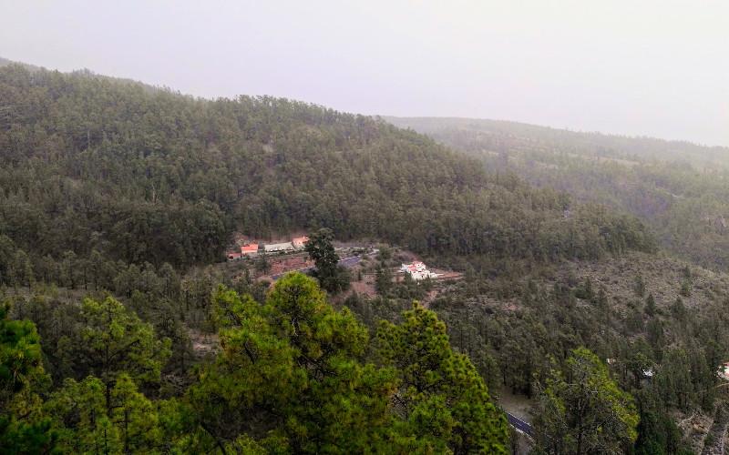 Camino del Pino Enano | Vilaflor | Vistas de pinares
