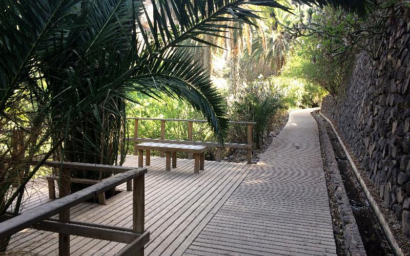 Rambla de Castro | Los Realejos | Tenerife Norte | Camino de madera