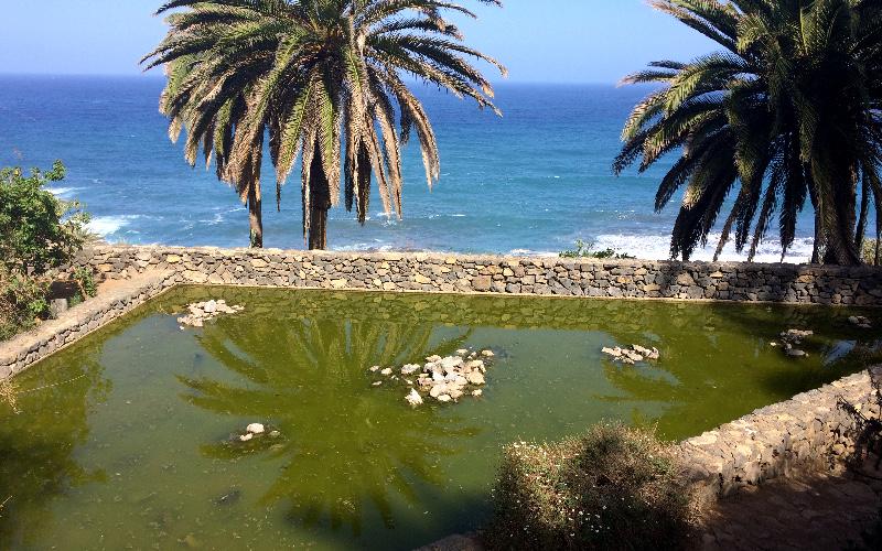 Rambla de Castro | Los Realejos | Tenerife Norte | Estanque