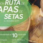 Ruta de la Tapa de Setas | 2017 | El Rosario