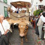 Fiestas y Romería de San Antonio Abad | Arona | 2018