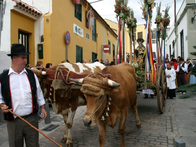 Romería de San Antonio Abad | Arona | 2018