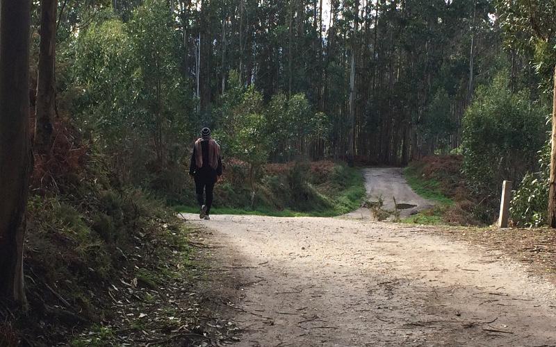 Fuciño do Porco | Senda forestal | Lugo