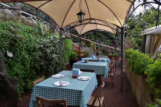 Guachinche Romance | La Orotava | Terraza