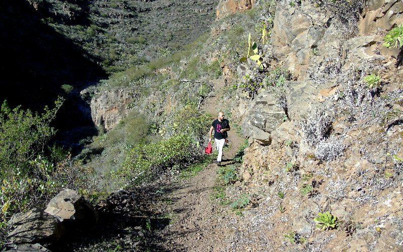 Senderismo en Tenerife Sur
