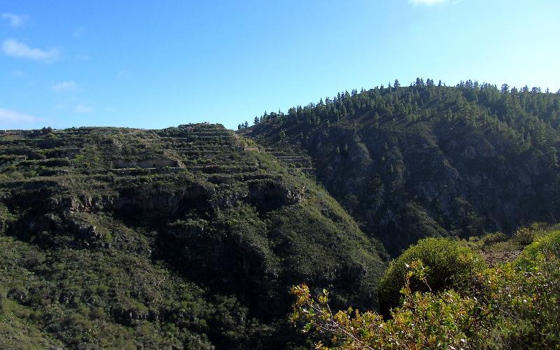 Caserío de Las Fuentes | Guía de Isora | Vistas del Barranco de Guaria