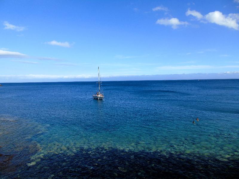Montaña Amarilla | Tenerife Sur | Aguas turquesas