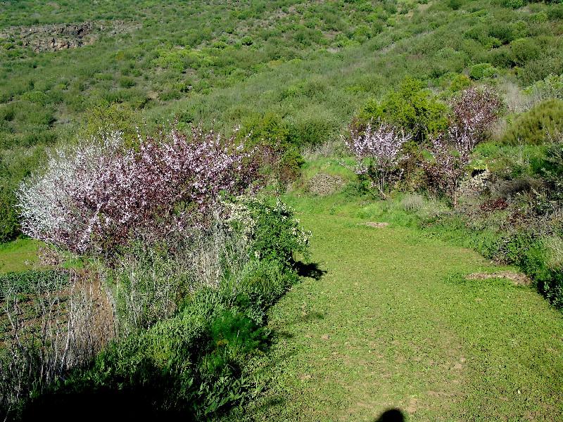 Ruta por la Montaña Bilma | Valle de Arriba | Almendros