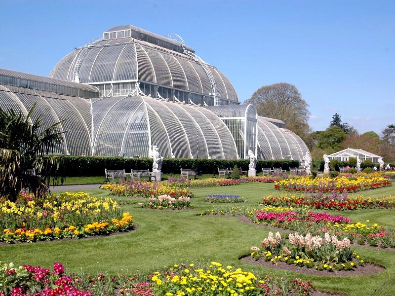 Real Jardín Botánico de Kew en la actualidad | Londres | Reino Unido