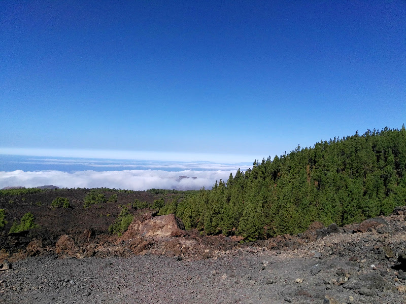 Tenerife | Parque Natural de la Corona Forestal