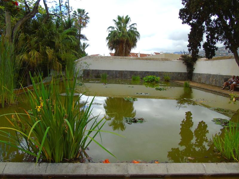 Jardín Botánico | Puerto de la Cruz | Tenerife | Islas Canarias | Estanque de nenúfares