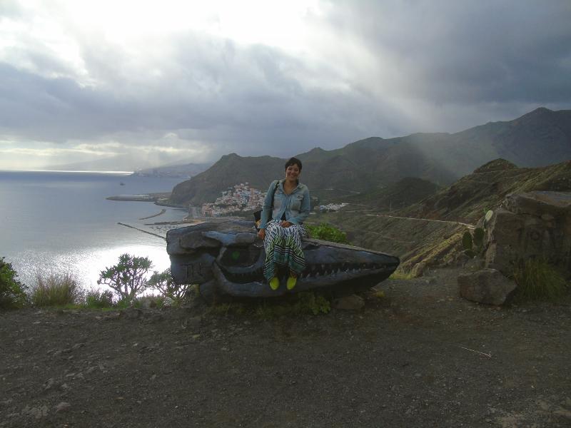 Mirador de la playa de Las Teresitas | Santa Cruz de Tenerife | Piedra dinosaurio