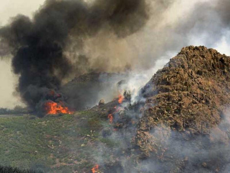 Parque Nacional de Garajonay | La Gomera | Incendio 2012