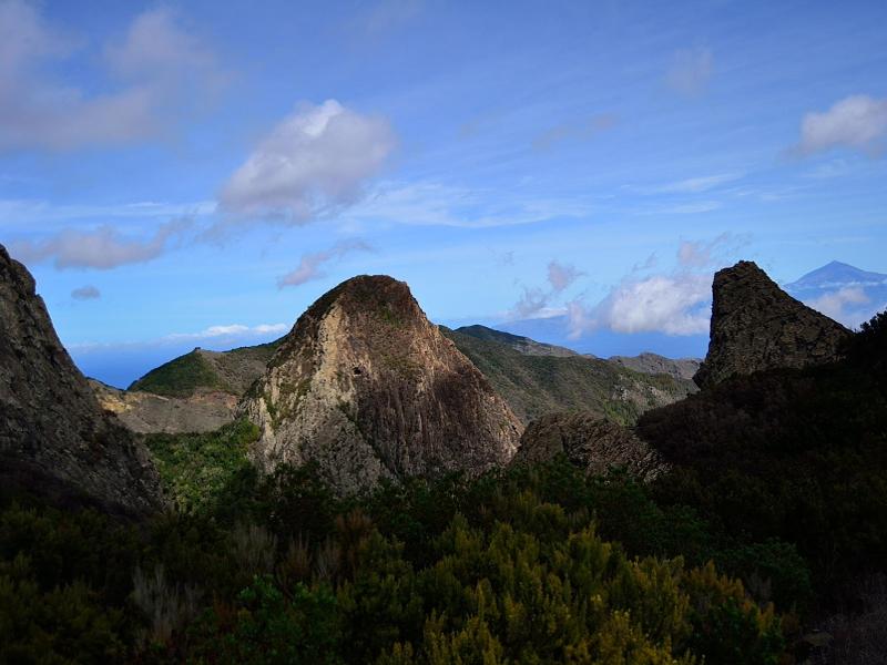 Parque Nacional de Garajonay | La Gomera | Los Roques