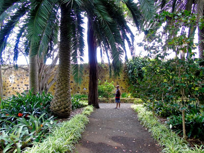 Puerto de la Cruz | Jardín Botánico | Tenerife | Canarias