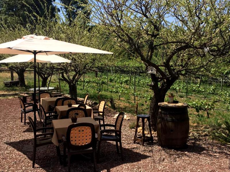 Guachinche El Miradero | Icod de los Vinos | Terraza