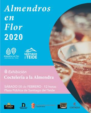 Campaña almendros Santiago del Teide