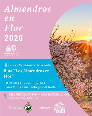 Almendros en Flor 2020 Santiago del Teide