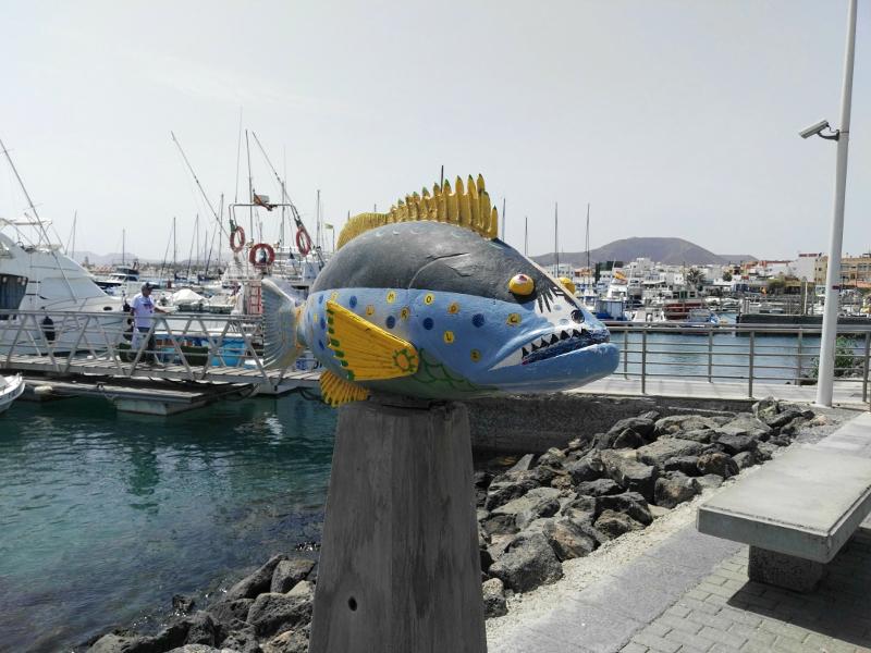 Puertos Canarios