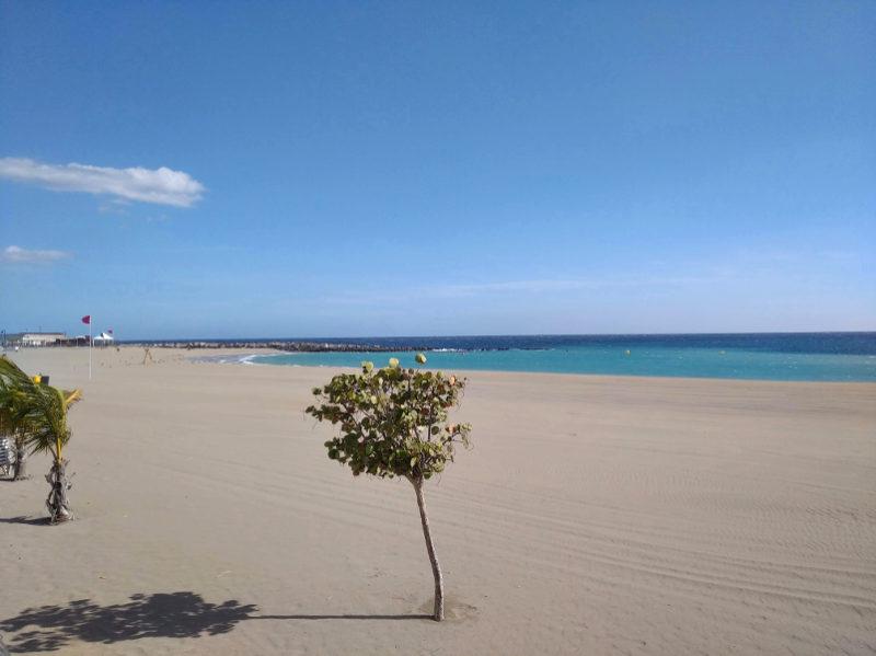 Playas Bandera Azul Tenerife